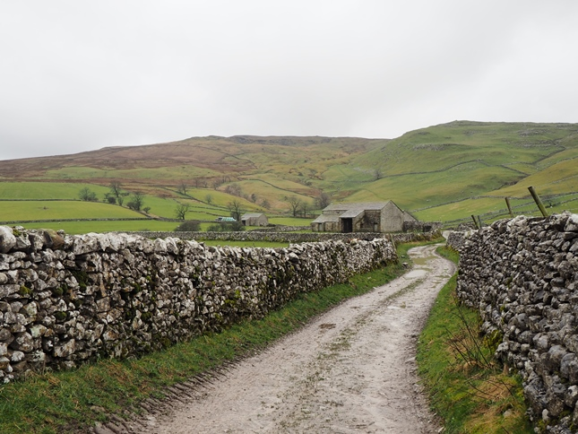 Kirkby Fell, with Pikedaw to the right. from the path leaving Long Lane