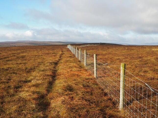 Following the fence to the summit