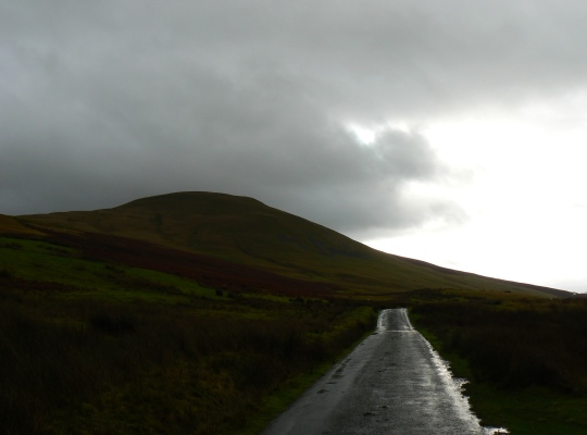 Linghaw above Fairmile Road