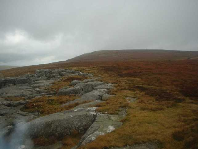 The soggy White Mossy Hill