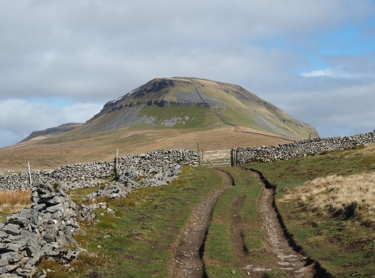 Approaching Pen-y-ghent from Long Lane