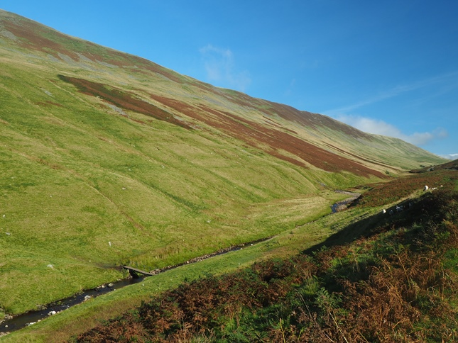 Barbondale Beck and the flanks of Calf Top
