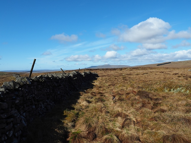 The wall running along the top of Blaydike Moss