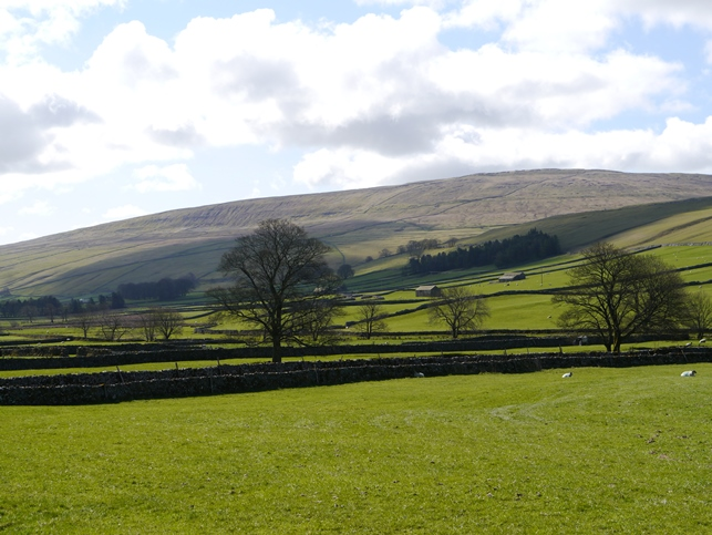 Darnbrook Fell as seen from near Halton Gill in Littondale