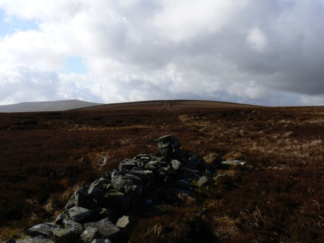 The terminus of the wall looking towards the top of Naughtberry Hill