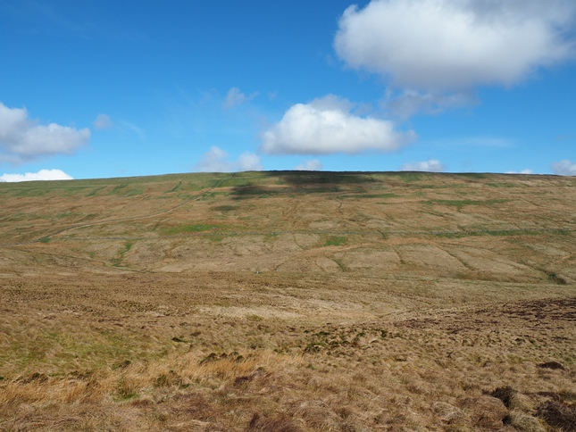 High Green Field Knott from Blaydike Moss