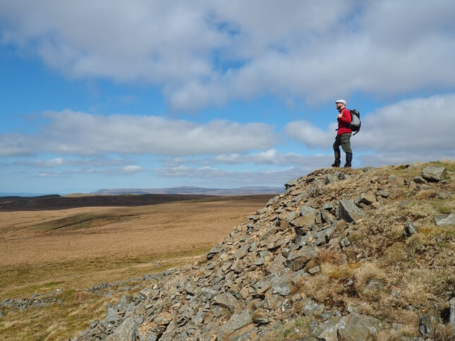 Enjoying the view from High Greygrits with the North Pennines in the background
