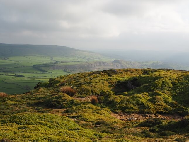 Skipton Moor from Halton Height