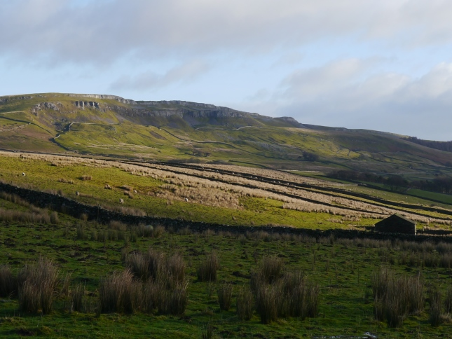 Ellerkin Scar from Low Straights Lane