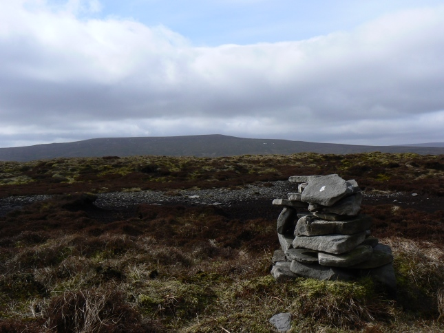 The top of Brown Haw looking to Buckden Pike