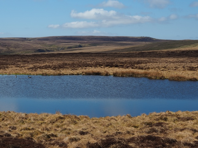 Nine Standards Rigg from Brownber Tarn