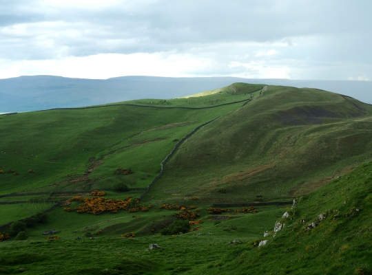 Long Rigg as seen from Birkett Hill to the south