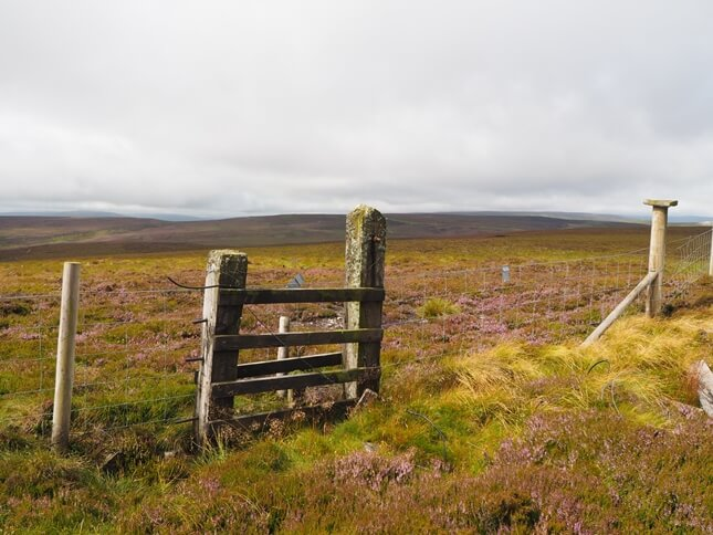 Tarn Seat from the fence crossing Whitaside Moor to the east