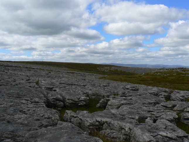 The limestone pavement of Great Asby Scar