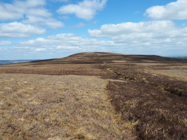The pathless approach to Naughtberry Hill from Buckden Pike