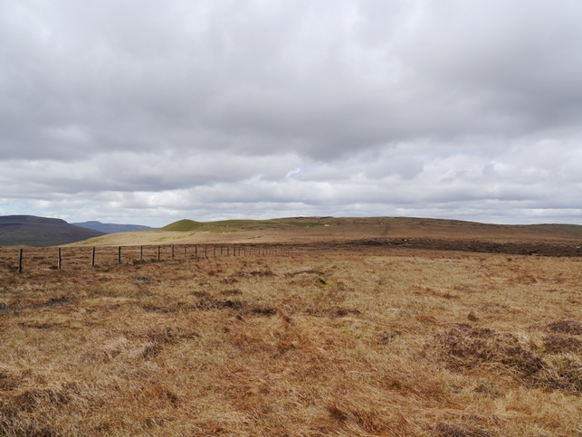 Approaching Horse Head Moor from Birks Fell - Sugar Loaf can be clearly seen on the left