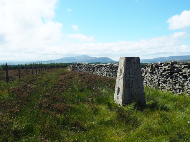 The Low Green Field Lings trig point looking towards Ingleborough and Whernside