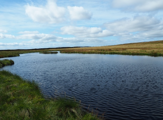 The small tarn in the col between Swarth Fell and Wild Boar Fell