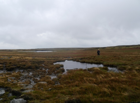 Crossing the boggy plateau of Baugh Fell