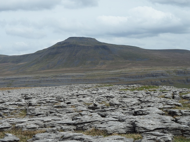 Ingleborough from Scales Moor