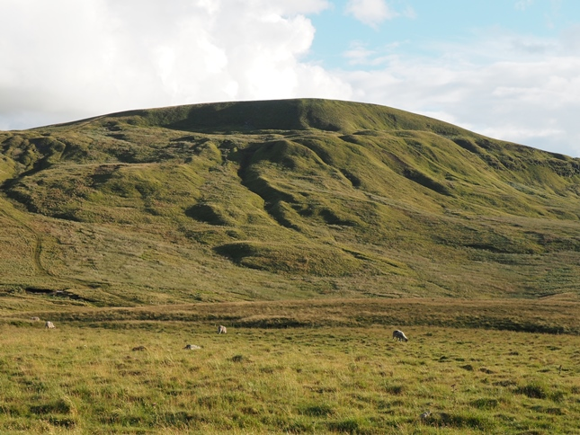 Fells End, the terminus of High Seat's long northern ridge