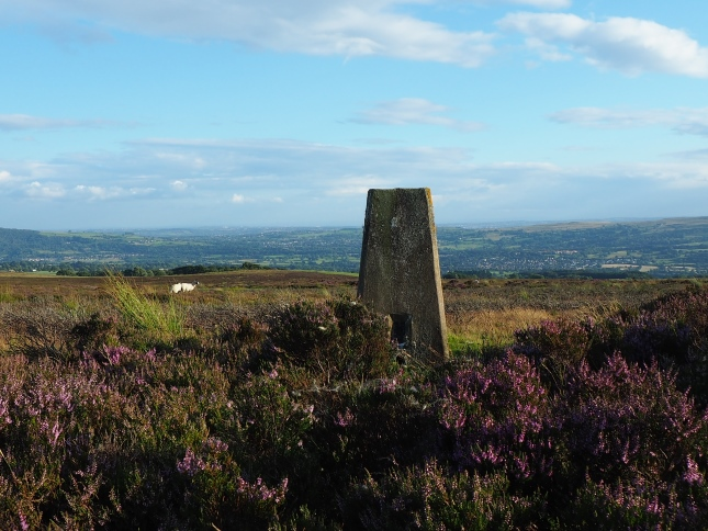 Looking south from the Askwith Moor trig point towards Otley and Burley-in-Wharfedale