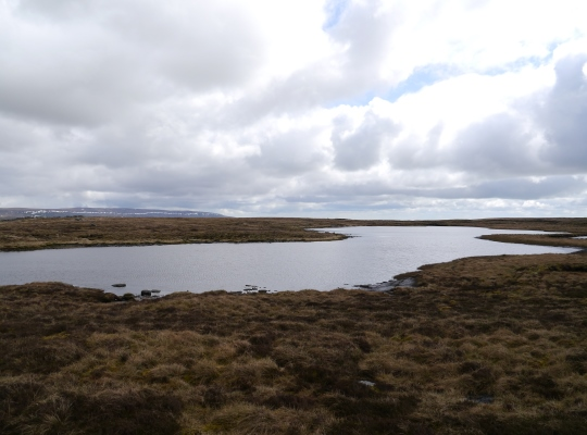 Birks Tarn looking towards a distant Great Whernside