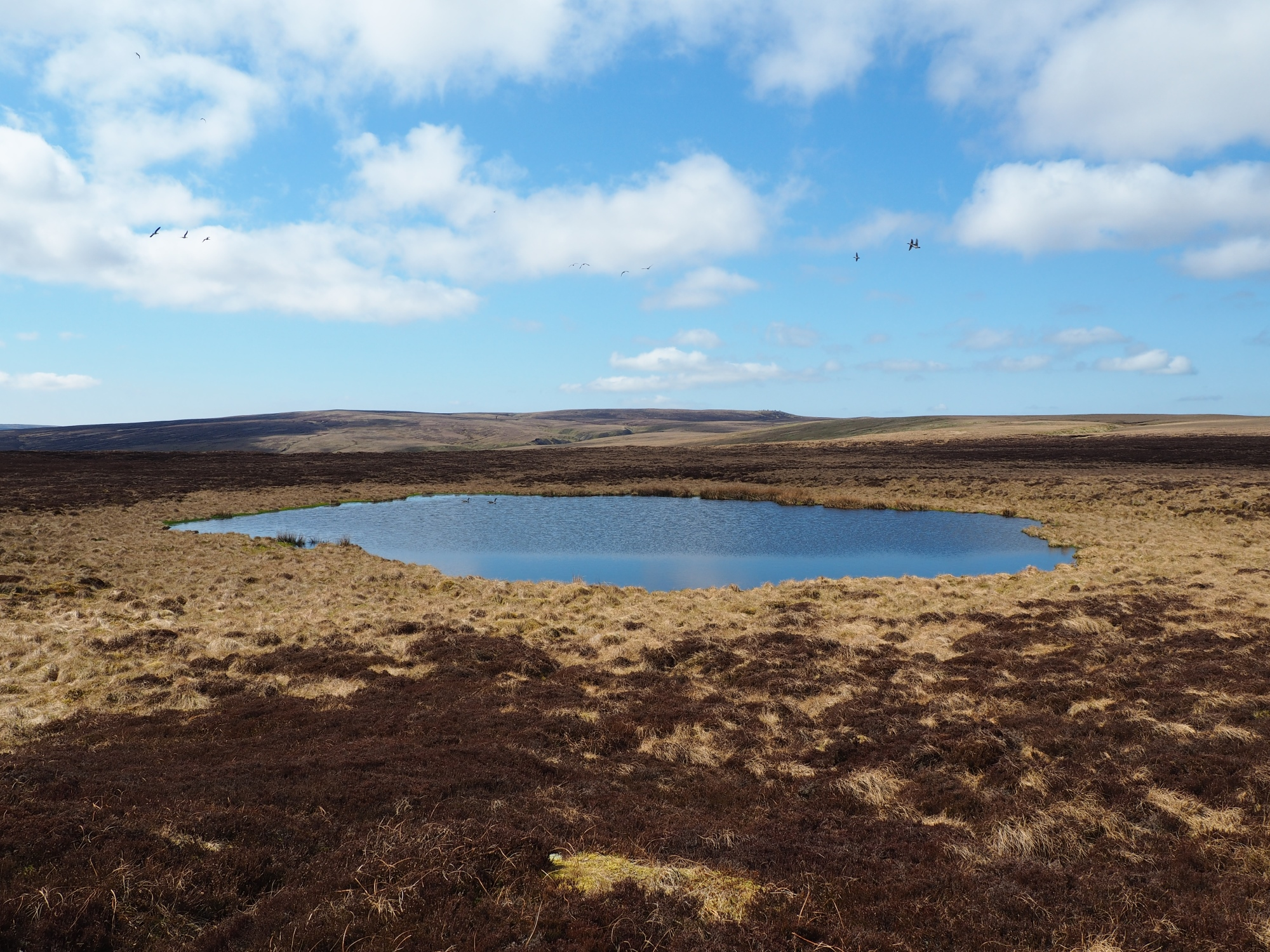 Brownber Tarn of the most remote tarns in the Dales
