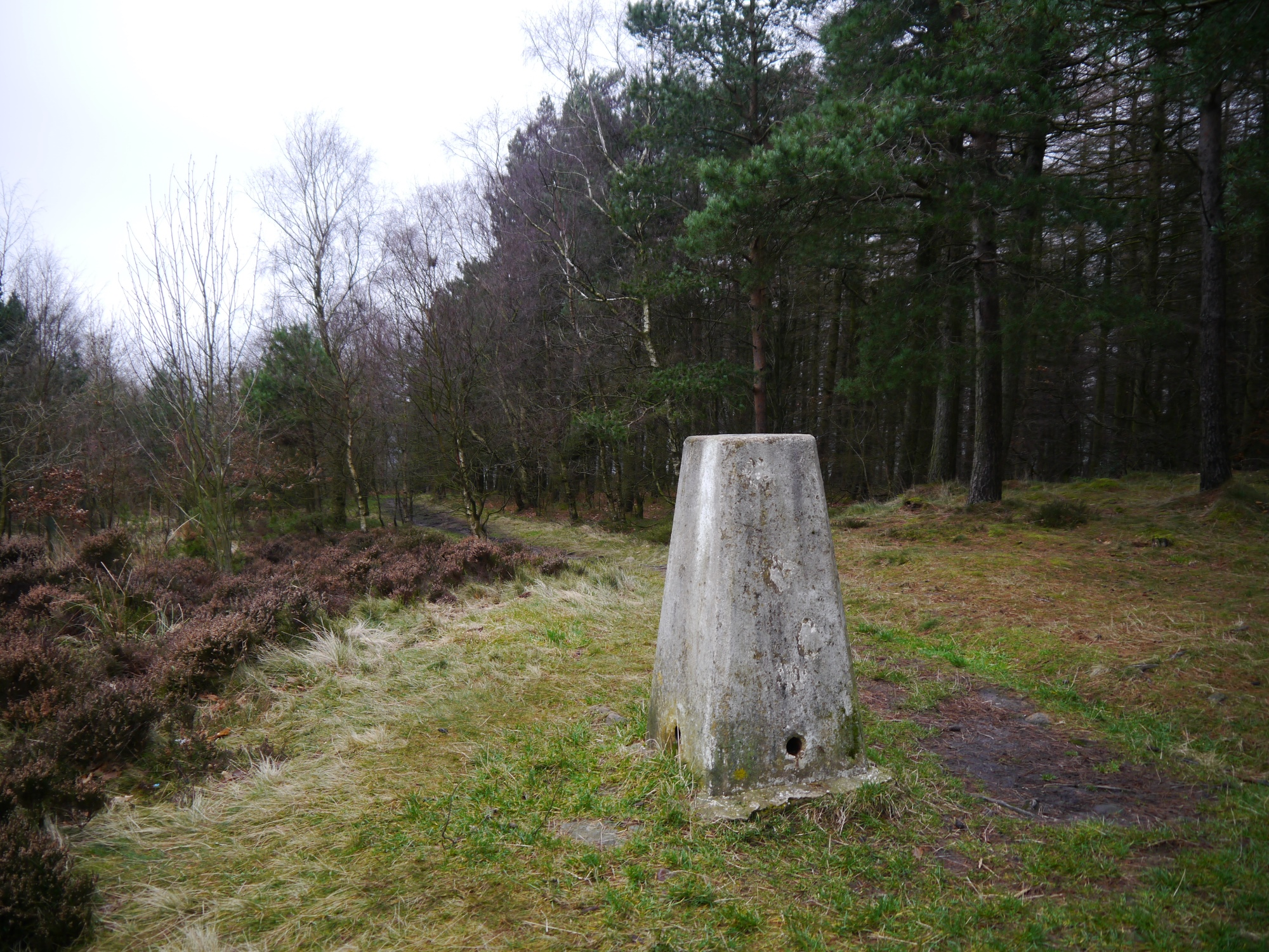 Caley Deer Park Trig Point