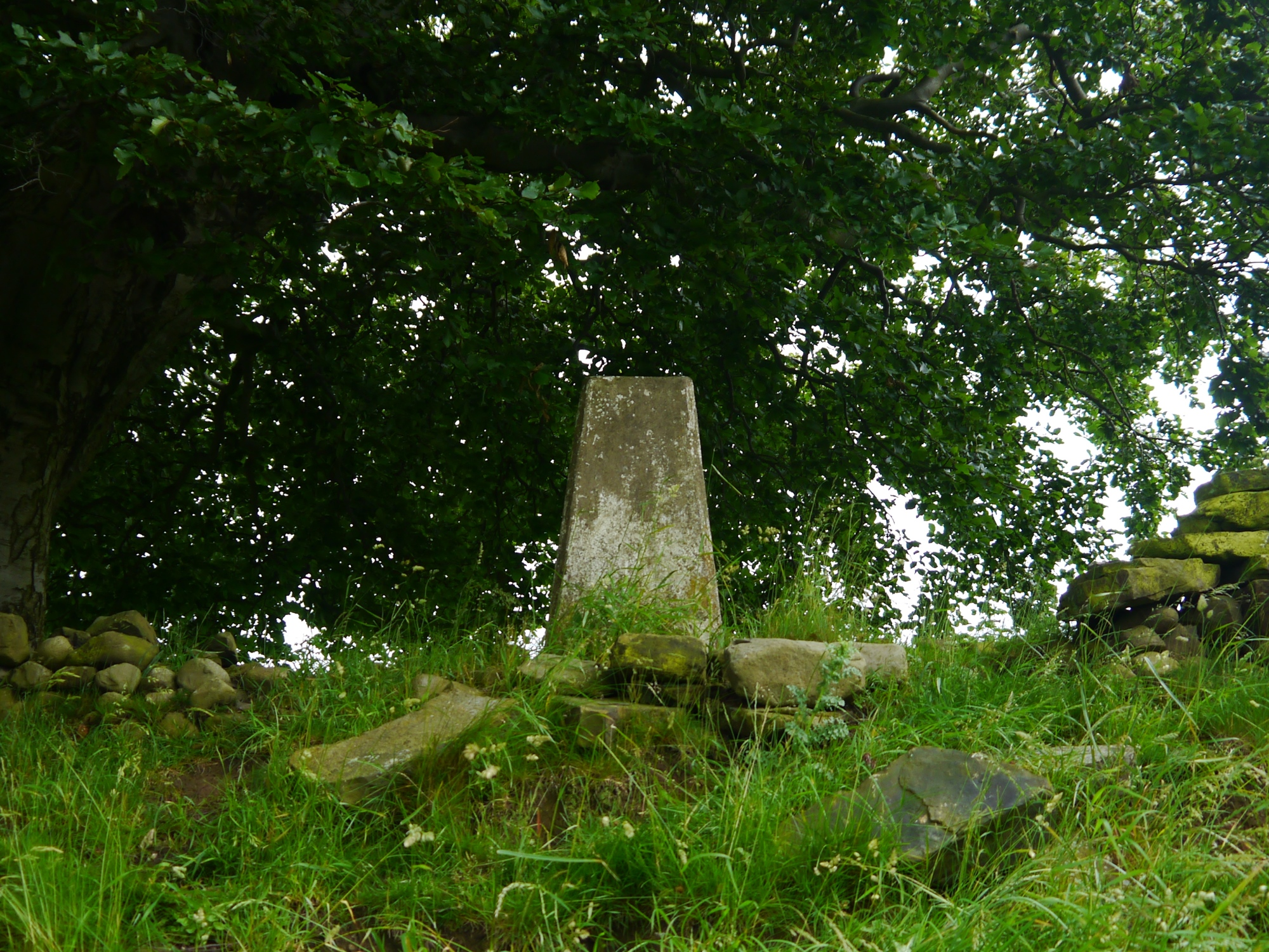 Camp Hill Trig Point