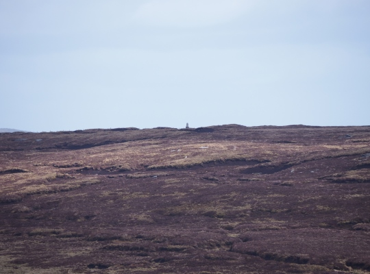 A zoom shot of the Cow Close Fell trig point on the peaty summit of Darnbrook Fell