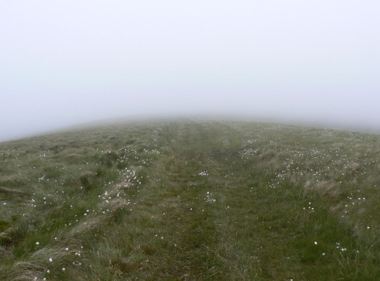 This faint grassy track led me safely across Little Fell in thick fog