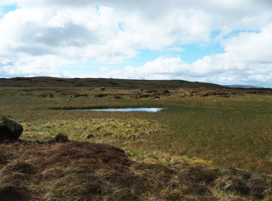 The change in colour of the vegetation surrounding suggests the Fleet Moss Tarn was once much larger