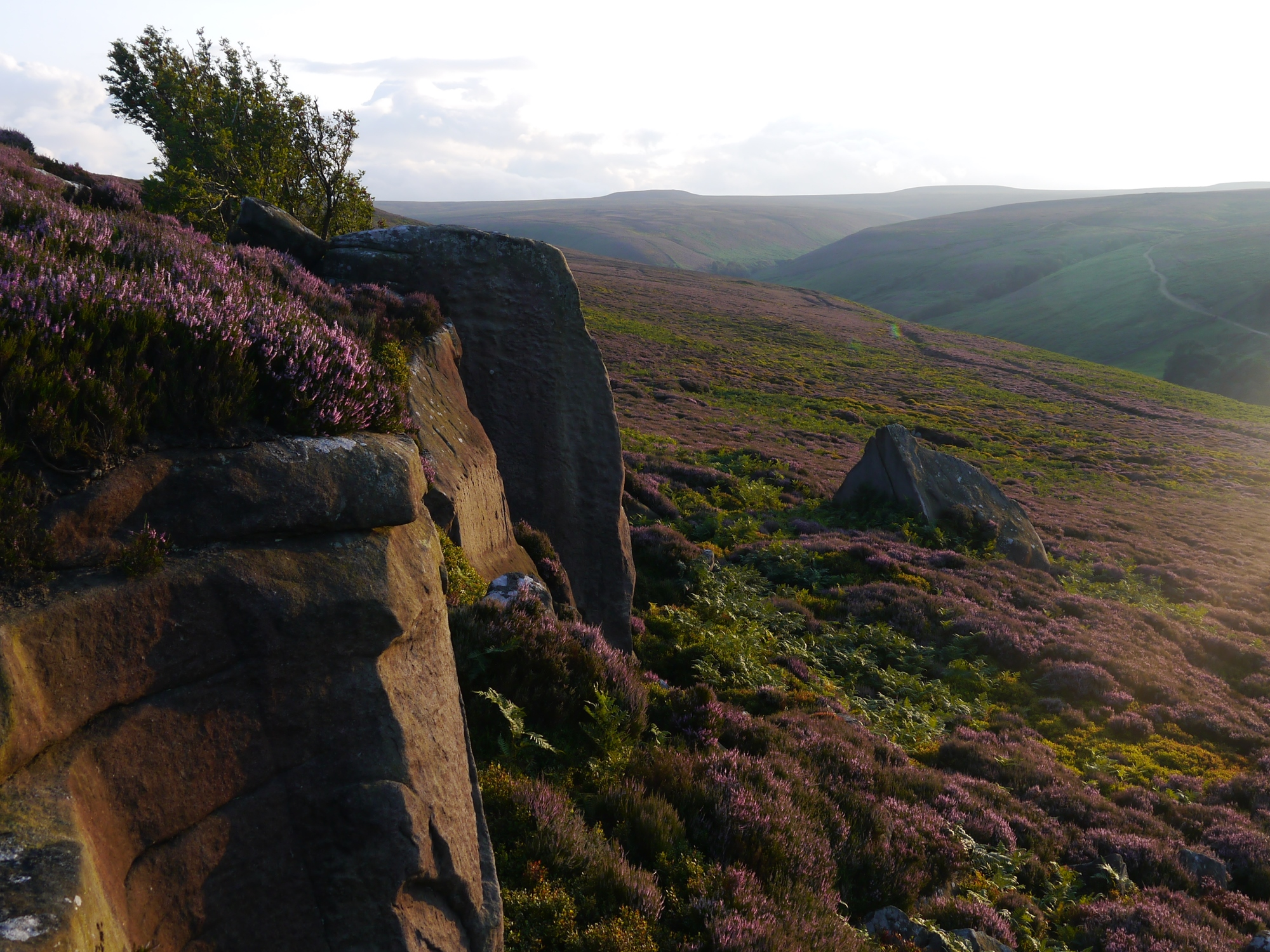 Gollinglith Crags