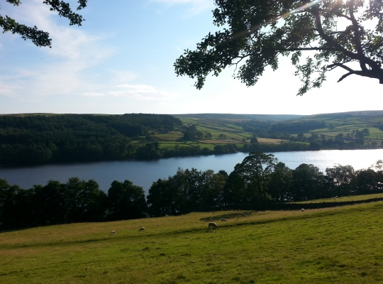 Gouthwaite Reservoir from the Nidderdale Way