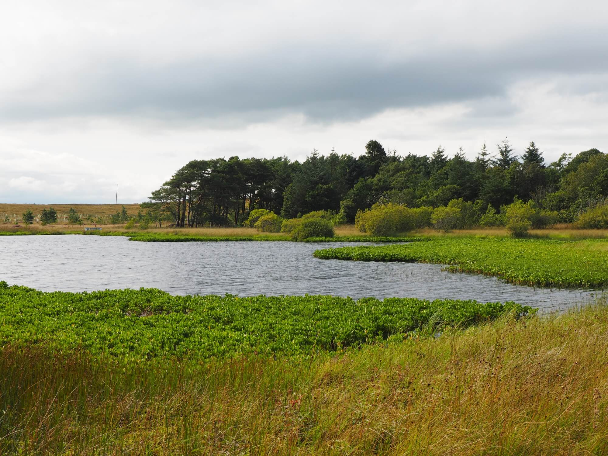 Greenside Tarn