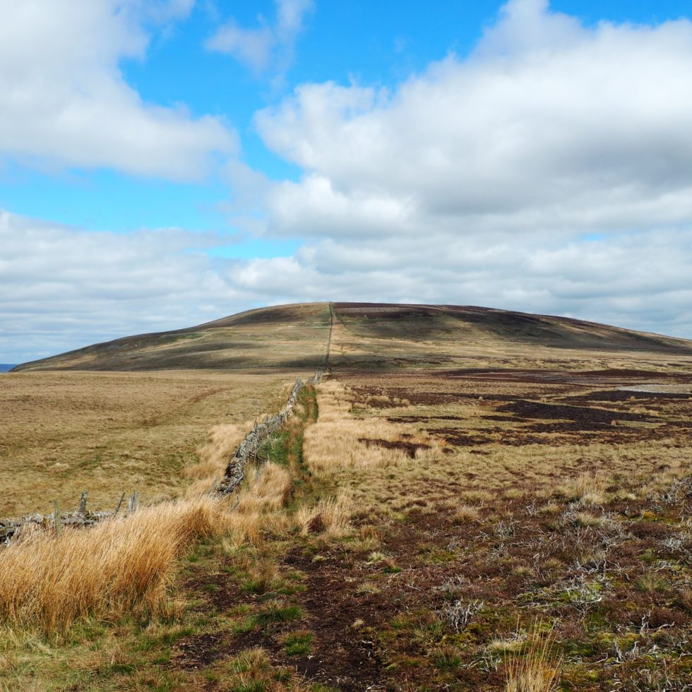 Harland Hill