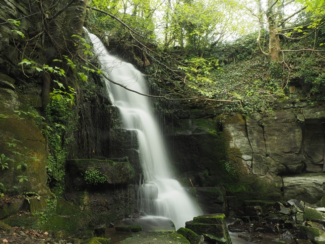 A closer view of Harmby Falls