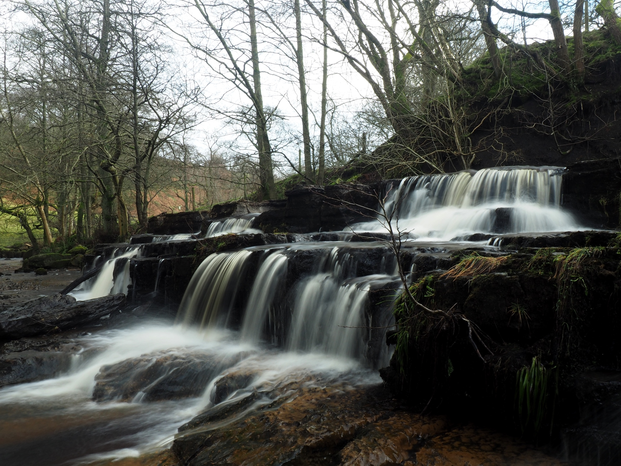 How Stean Force