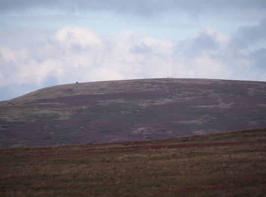 Hugh Seat from Little Fell to the south with Lady's Pillar and the summit fence clearly visible