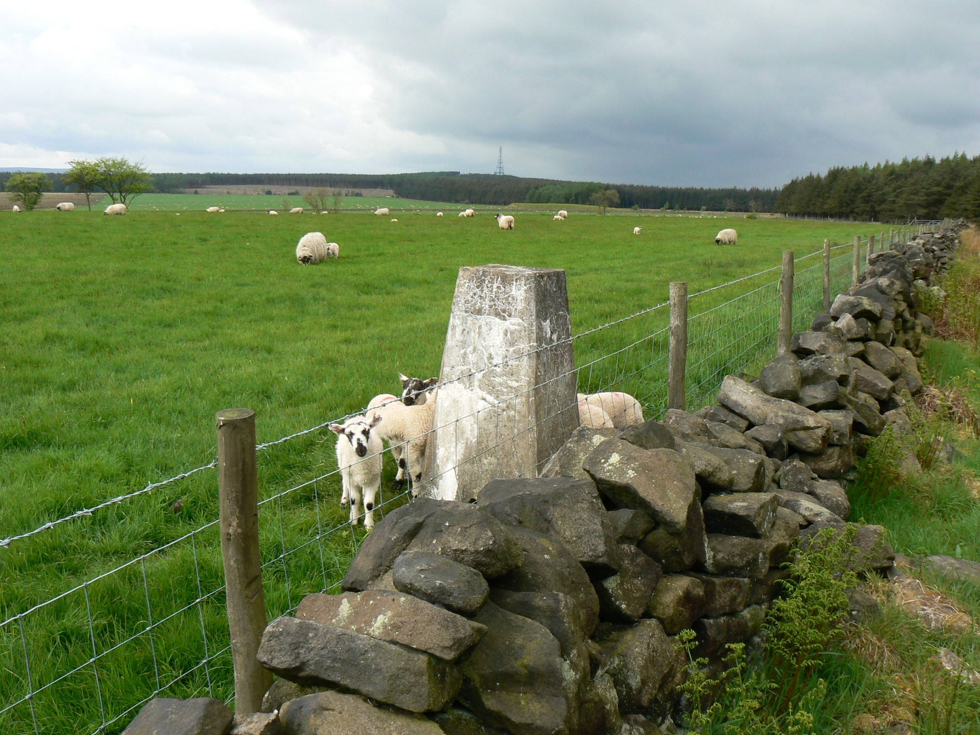 Lanshaw Farm Trig Point