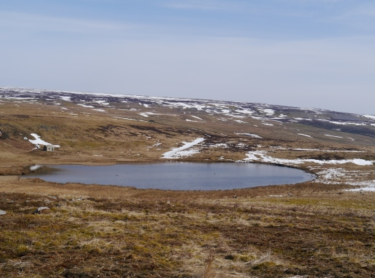 Locker Tarn