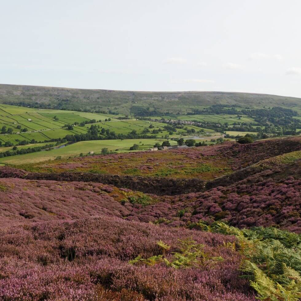 Maiden Castle above Swaledale