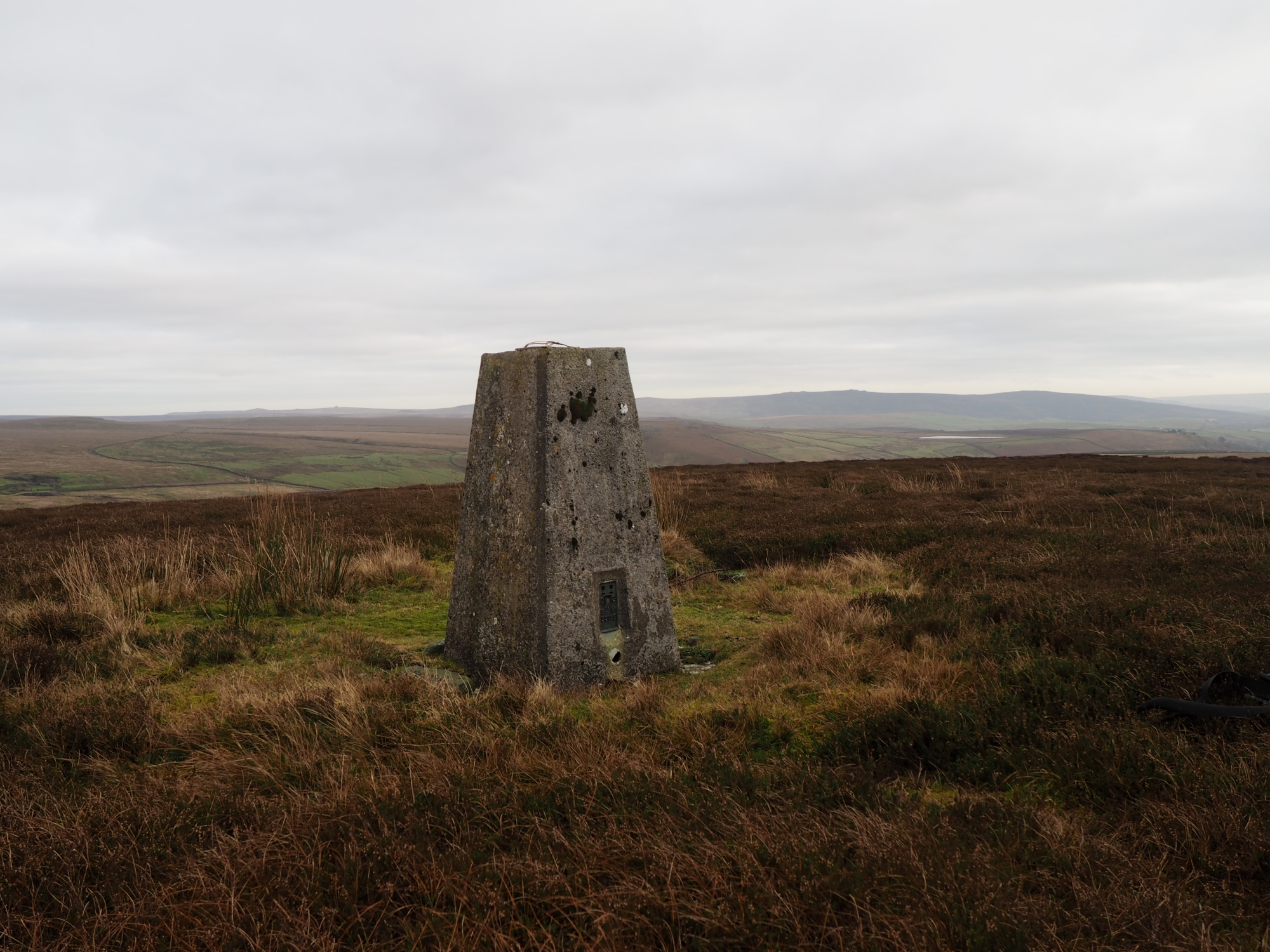 New Pasture Edge Trig Point