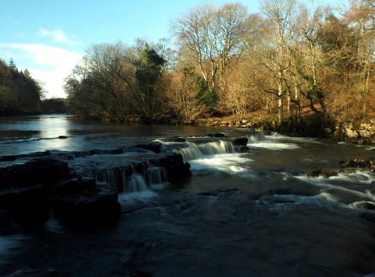 Another view of the upper section of Redmire Force