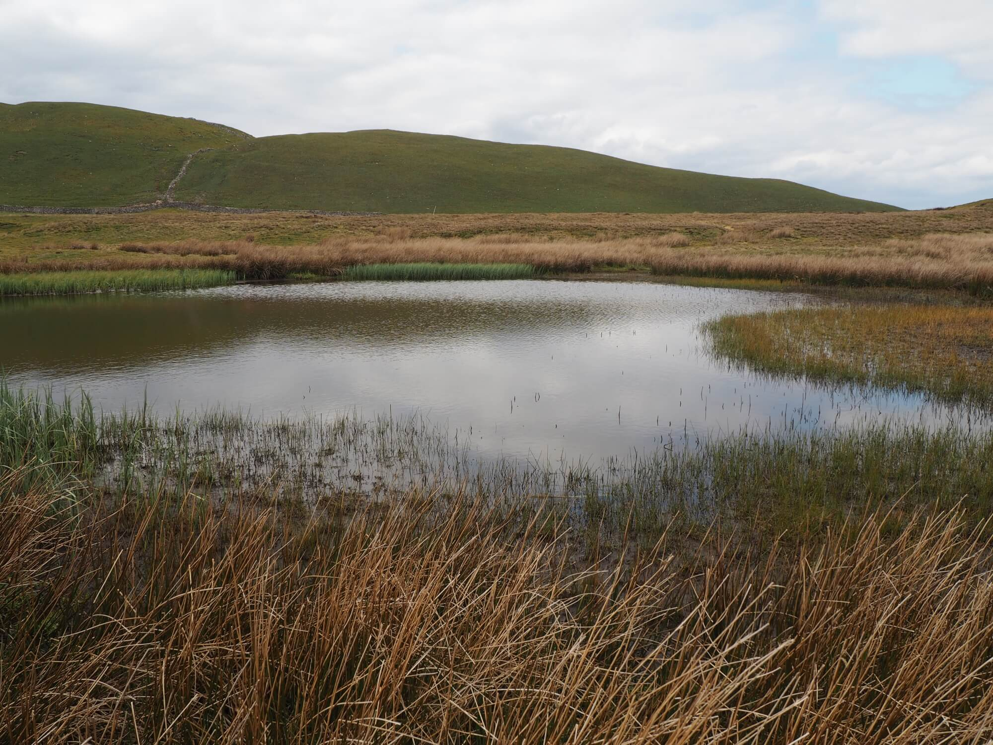 Side Well Tarn