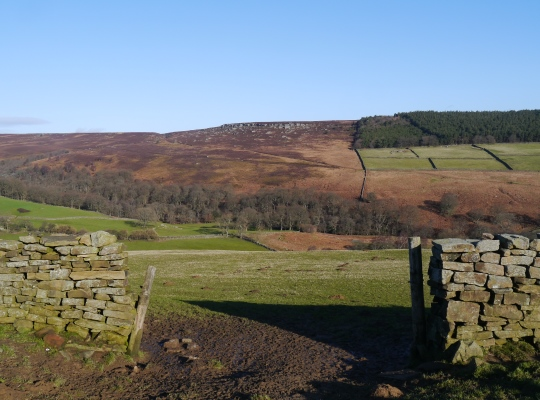 Looking across the valley of Colsterdale to Slipstone Crags
