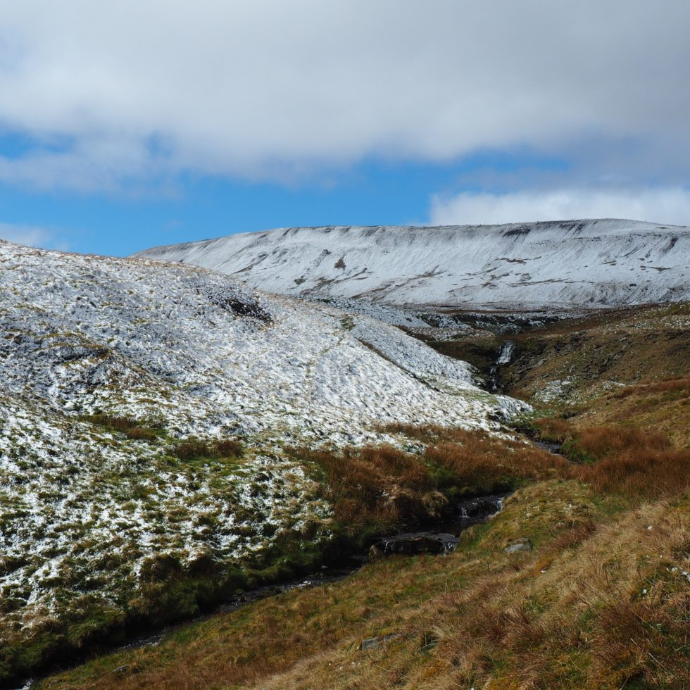 Whernside and the upper reaches of Force Gill