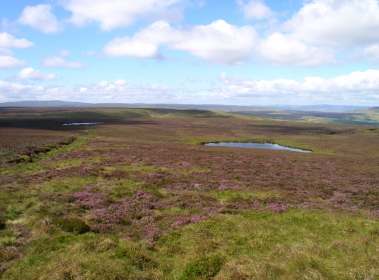 Coverdale Tarn and Woogill Tarn from Great Haw