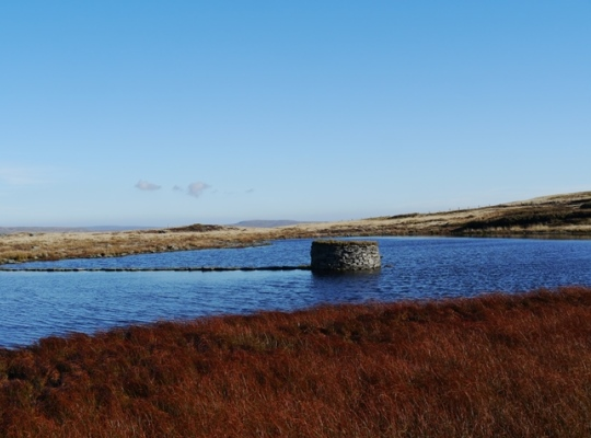 The grouse butt in the centre of Widdale Little Tarn